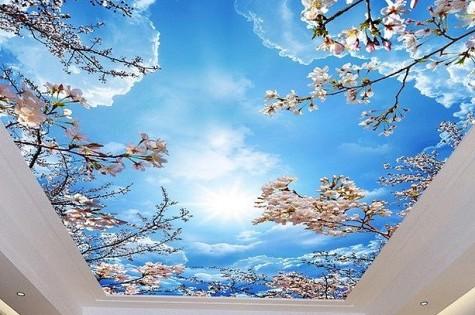 3D натяжной потолок весеннее небо