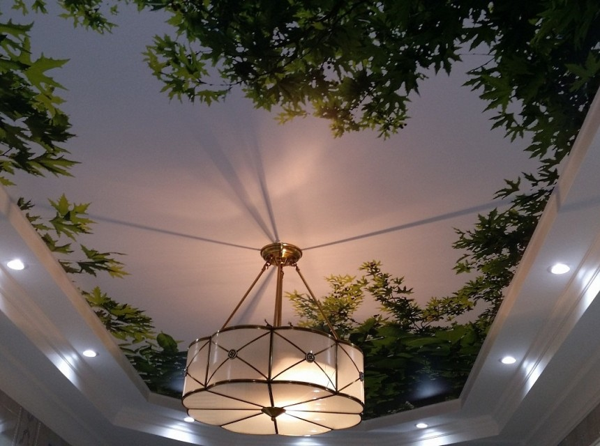 Художественный натяжной потолок зеленые ветви