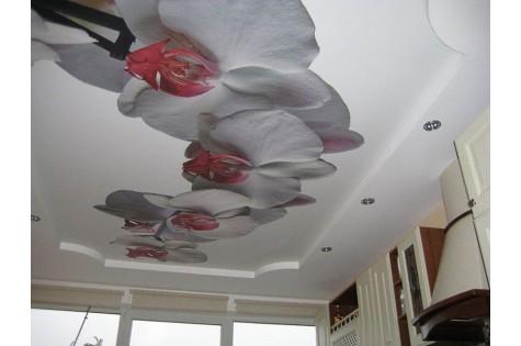 Натяжной потолок с фотопечатью орхидеи